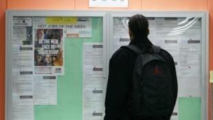 Un homme regardant un tableau proposant des offres d'emplois à San Francisco.