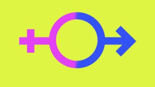 Au Japon, les personnes transgenres qui veulent faire enregistrer juridiquement leur changement de genre ne doivent pas avoir d'organes reproductifs, ou alors ceux-ci doivent avoir perdu leur fonction.