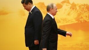 習近平與普京