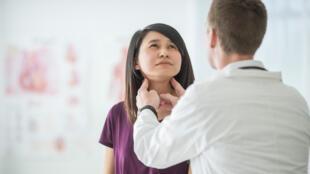 Située à la base du cou, la thyroïde produit des hormones essentielles qui interviennent à tous les niveaux de l'organisme.