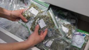 Un employé israélien transporte des sacs de cannabis vendus à des patients porteurs d'ordonnances dans un dispensaire de la société de cannabis médical Tikun Olam dans la ville côtière israélienne de Tel Aviv le 2 mars 2016.