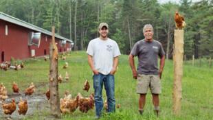 生產有機產品的美國家庭農場