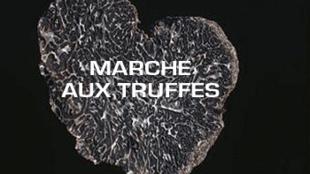 A feira de trufas de Carpentras é uma das mais importantes da França e é divida em duas, uma para os particulares e outra para os professionais.