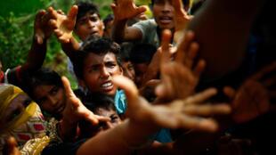 逃亡到孟加拉国境内的缅甸罗兴亚难民焦急地等待着食物