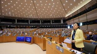 欧洲议会议员发言图片