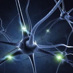 A síndrome de Guillain-Barré afeta o sistema nervoso periférico