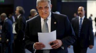 Ibrahim Mahlab, primeiro-ministro egípcio, apresentou demissão do gabinete.