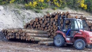 El representante de Comercio de EEUU dijo que hasta la fecha el gobierno de Perú no ha probado que La Oroza cumpla con los compromisos acordados de defensa del medio ambiente