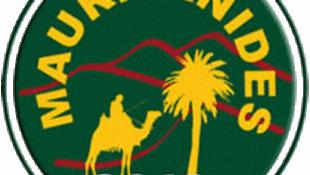 Le salon Mauritanides a été un succès en 2012. (Logo du salon Mauritanides).