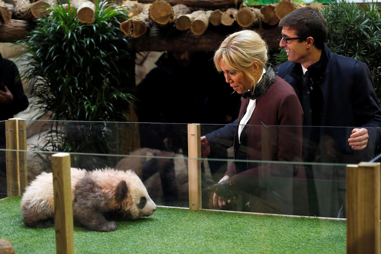 Com quatro meses, o bebê panda Yuan Meng foi batizado nesta segunda-feira (4) no zoológico de Beauval, na presença de sua madrinha Brigitte Macron.