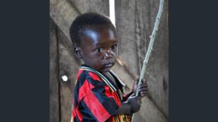 En République démocratique du Congo, l'adoption des enfants à l'étranger a été suspendue. Certains feraient l'objet d'un traitement inhumain dans les pays d'adoption.