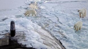 Poucos graus a mais já fazem diferença para a estabilidade das calotas polares e geleiras, afirmam cientistas.