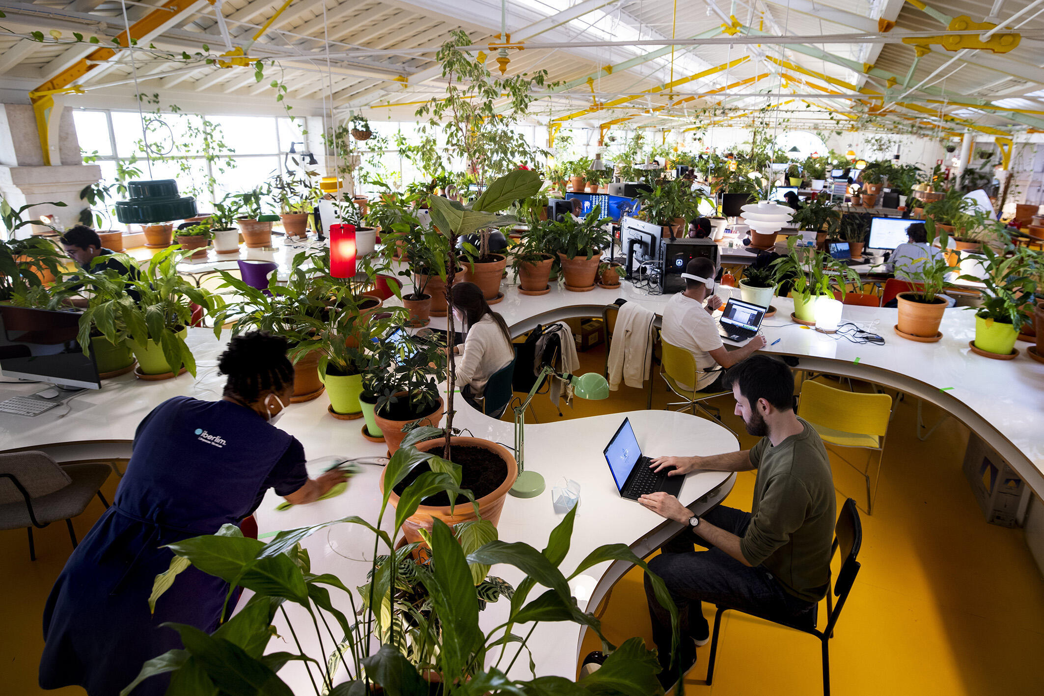 """Vincent (right), a French software developer, is seen here in Lisbon at """"Second house,"""" a sought-after coworking space with a proliferation of indoor plants."""