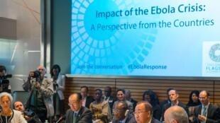 Representantes de países africanos afetados pelo ebola encontram-se com líderes da ONU, do FMI e do Banco Mundial para discutir combate à epidemia.