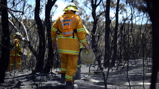 Les services de secours australiens peinent à contenir les départs de feux qui ravagent l'est du pays depuis vendredi dernier.