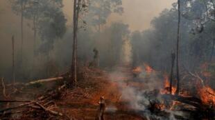 Um bombeiro luta contra o fogo, na floresta da região de União do Sul,em Mato Grosso,na Amazónia brasileira .04 de Setembro  de  2019