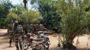 photo enro Casamance 15 juin matinale