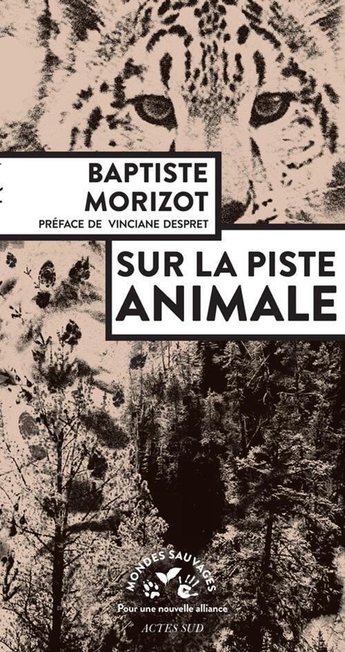 Couverture de «Sur la piste animale» de Baptiste Morizot (Actes Sud, 2018).