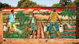En 2019, le PAFAO a pour objectif général de promouvoir les initiatives locales de renforcement de l'accès à l'alimentation par une agriculture familiale dans les pays d'Afrique de l'Ouest.