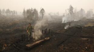 Một góc rừng bị đốt gần Palangkaraya, trung tâm đảo Kalimantan, Indonesia, ngày 28/10/2015.