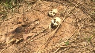 One of the mass graves being investigated