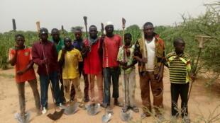 Un champ de céréales dans le village de Diomga, province de l'Oudalan, région du Sahel, au Burkina Faso.
