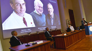 Harvey Alter, Michael Houghton and Charles Rice won this year's Medicine Nobel for the discovery of Hepatitis C virus.