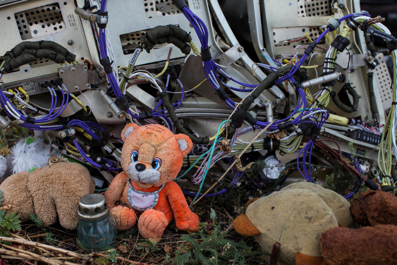 图为被导弹击落的MH17残骸惨景