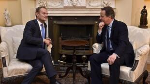 Thủ tướng Anh David Cameron (P) tiếp chủ tịch Hội Đồng Châu Âu, Donald Tusk. Ảnh ngày 31/01/2016.