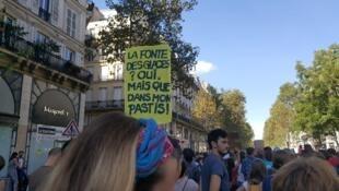 Pessoas desfilam em Paris, para chamar a atenção dos governos perante as mudanças climáticas. 08 de Setembro de 2018