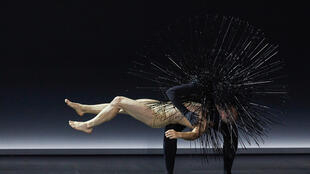 Немецкий хореограф и танцовщица Саша Вальц представила на театральном фестивале в Авиньоне спектакль «Kreatur»