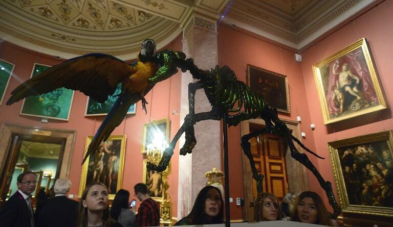 Выставка Яна Фабра «Ян Фабр. Рыцарь отчаяния — воин красоты» в петербургском Эрмитаже, 21 октября 2016.