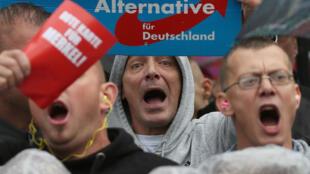 德國右翼民粹主義選項黨選民