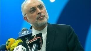 علی اکبر صالحی رئیس سازمان انرژی اتمی ایران