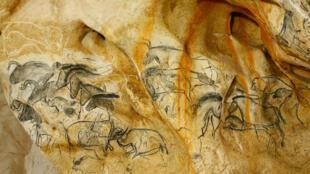 Ces dessins de rhinocéros et de chevaux sur les parois de la grotte sont à ce jour les premières images de l'humanité.