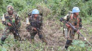 Forces coalisées FARDC-MONUSCO engagées dans une opération de sécurité, territoire de Beni, province du Nord-Kivu, janvier 2017.