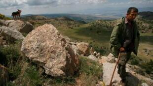 Un berger druze sur le Plateau du Golan.