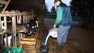 Les éleveurs européens qui dépensent jusqu'à 45 centimes d'euros pour faire produire un litre de lait à leur vache, n'en retirent guère plus de 30 centimes en France, 24 centimes en Allemagne.