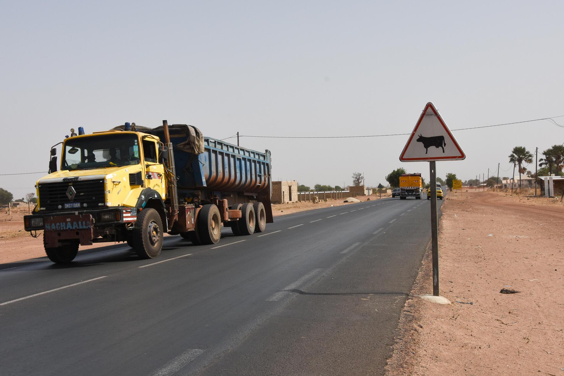 Sur la route entre Dakar et Kaolack, les panneaux de signalisation rappellent aux conducteurs les risques de traversée de bétail.