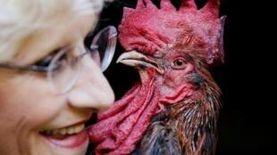 Bà Corinne Fesseau và chú gà trống Maurice, tại Saint-Pierre-d'Oleron, Pháp, ngày 31/08/2019.