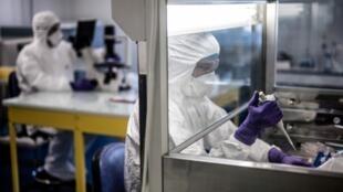 法国某P3病毒研究所科学家研制新冠状病毒肺炎治疗药物。摄于2020年2月5日