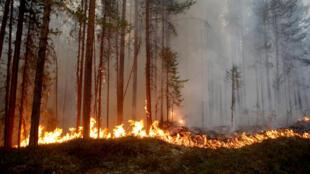 A wildfire is seen in Karbole outside Ljusdal, Sweden, July 15, 2018. Picture taken July 15, 2018.