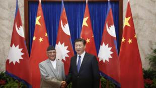 图为尼泊尔总理访华时会见中国主席习近平,2018年6月。