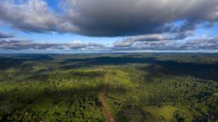 Vista aérea de la carretera Transamazonica (BR-230) cerca de Medicilandia, estado de Pará, Brasil, el 13 de marzo de 2019.