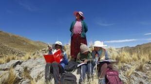 En esta foto de archivo tomada el 24 de julio de 2020 (de izq. a der.) los hermanos Juan Carlos, de 13 años, Álvaro, de 10 años, y Roxana Cabrera, de 16 años, están acompañados por su madre Raymunda Charca, en la cima de una colina donde pueden captar la señal de sus teléfonos móviles para recibir clases virtuales durante la pandemia del coronavirus de la novela COVID-19, cerca de su casa en la remota comunidad montañosa de Conaviri, distrito de Manazo, en los Andes peruanos, cerca del lago Titicaca y la frontera con Bolivia.