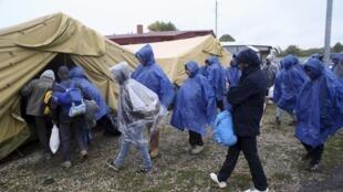 پناهجویان برای ثبت نام به مراکز  پناهجویان در اسلوونی می روند..