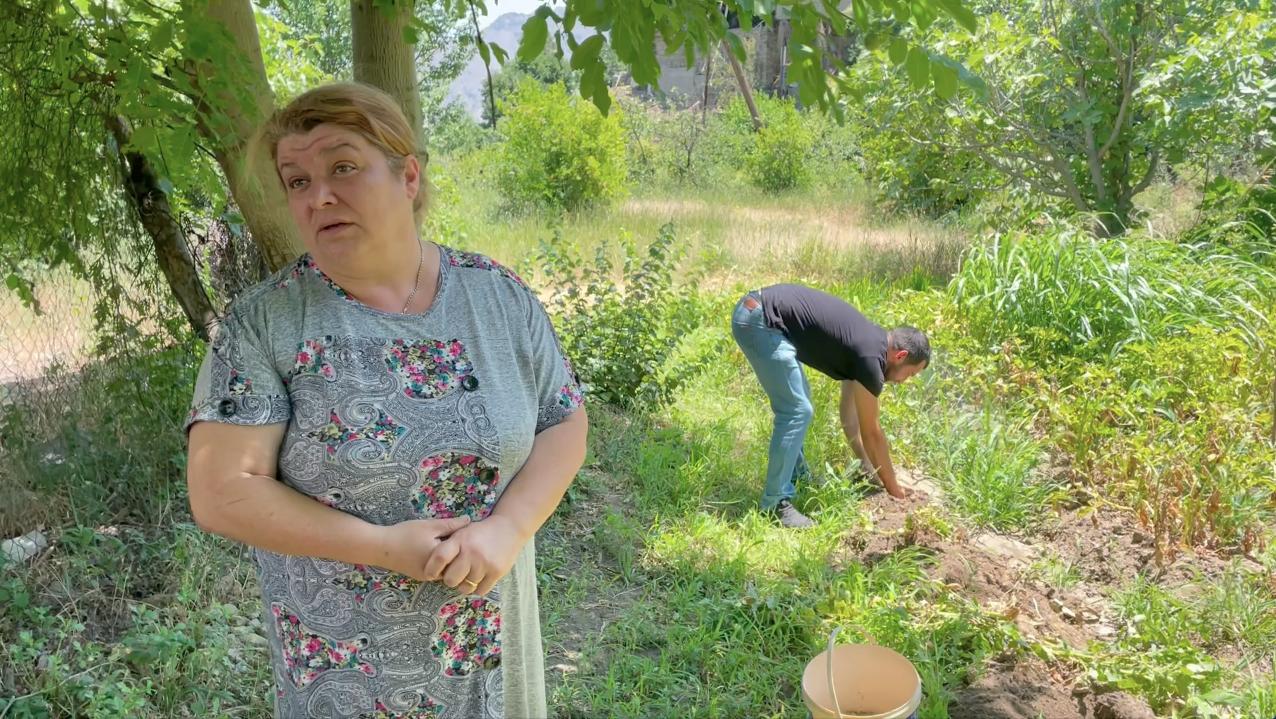 Тереза и ее сын Володя Джагангирян собирают картофель в огороде города Мегри. Сюникская область. Армения. 14 июня 2021 год.