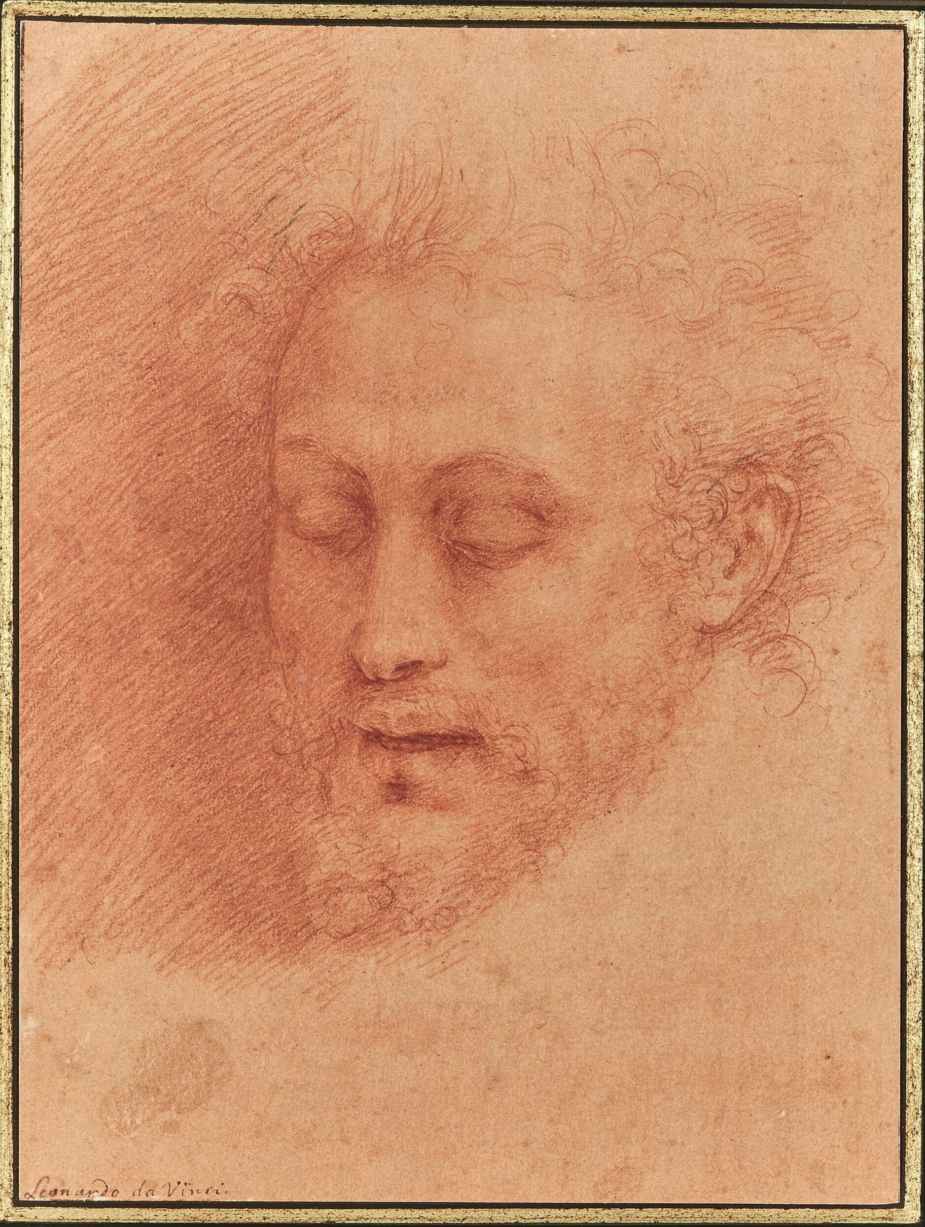 Cabeza de San Juan Bautista, Cesare Da Sesto (1477-1523),  sanguina sobre papel.