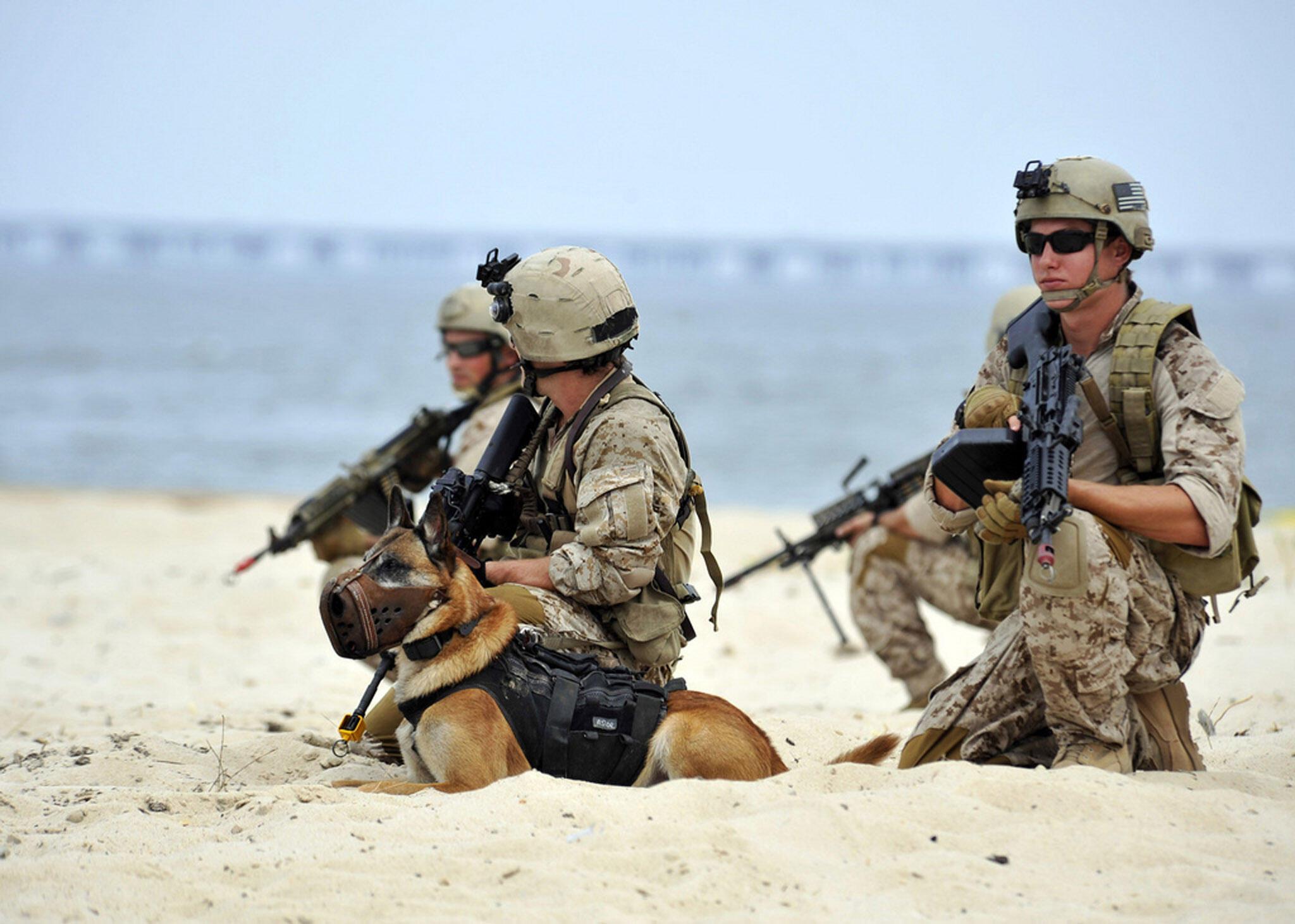 A intervenção na Somália foi feita pelos Navy Seals, a elite da marinha americana. Treino das tropas na Virgínia, em julho de 2010.