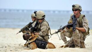 Os Navy Seals são a elite da marinha norte-americana.